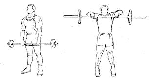 Quels exercices pour travailler ses épaules?
