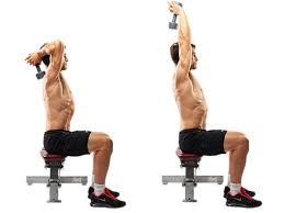 Quels exercices pour travailler vos triceps?
