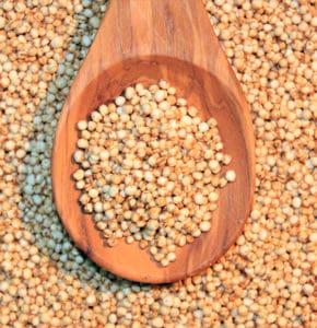 Le Quinoa, l'allié des sportifs et de leur performance