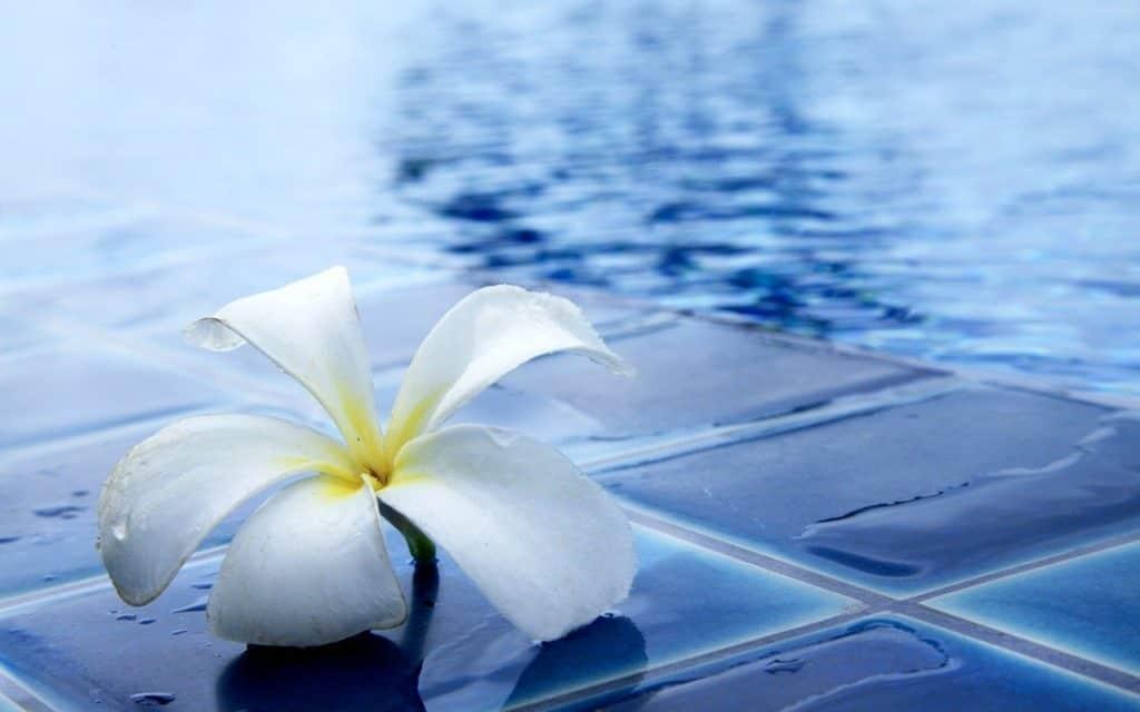 L'aquagym: pour commencer ou reprendre le sport en douceur
