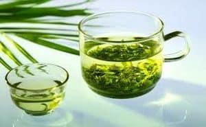 Optez pour les plantes tonifiantes sans caféine !