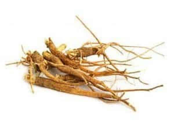 lutter contre la fatigue le stress et la déprime avec les plantes adaptogènes