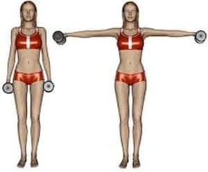 Les élévations latérales : pour façonner vos épaules