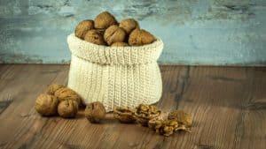 Focus sur les bienfaits des noix