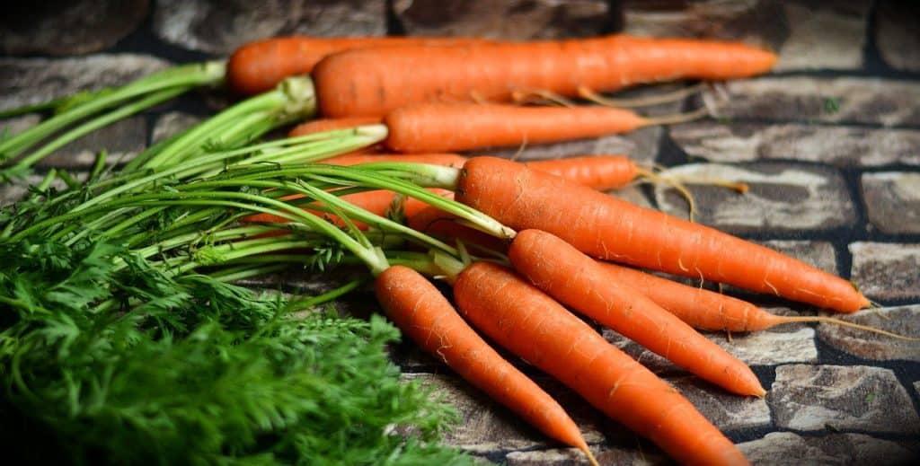 La carotte : l'atout forme, santé et performance !