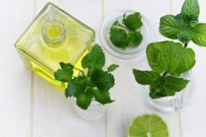 Les bienfaits huile essentielle de menthe poivrée