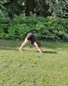 Quelles postures de yoga pour fortifier son dos?