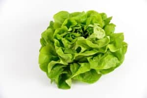Les bienfaits de la salade