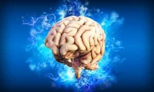 Le sport, gardien de vos neurones et de votre mémoire