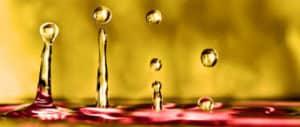 Les bienfaits de l'huile essentielle de vétiver