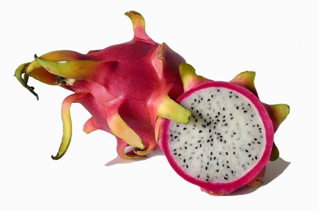 focus sur le pitaya