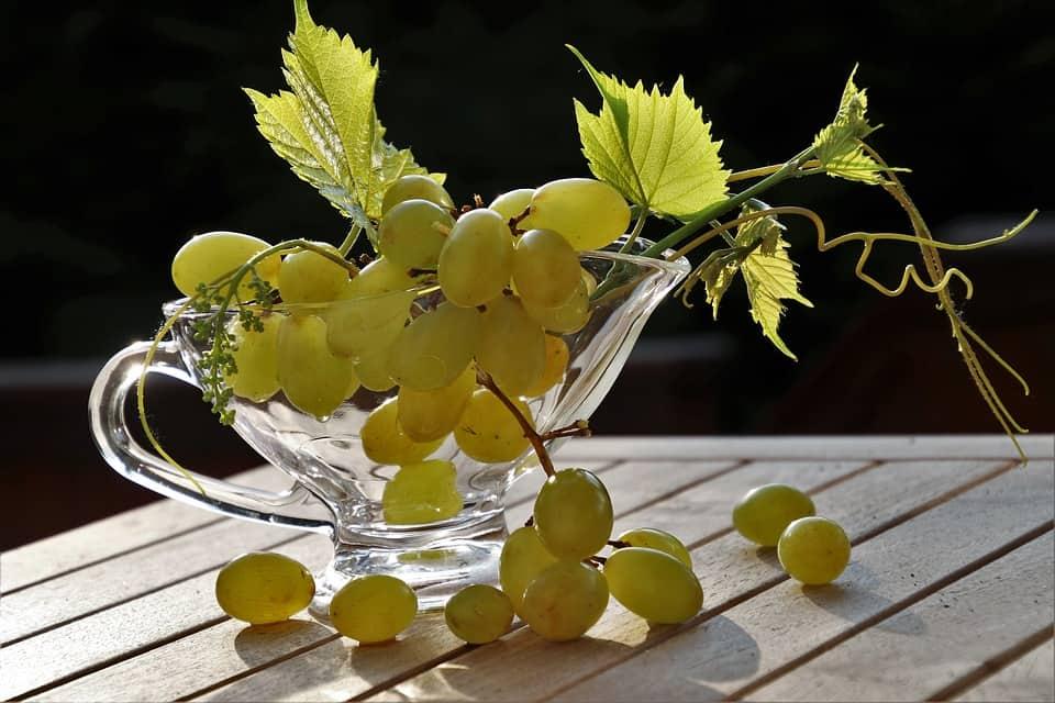 Le raisin frais : un fruit énergétique adapté pour la récupération