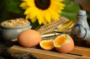 Les bienfaits des acides aminés pour vos muscles et votre santé